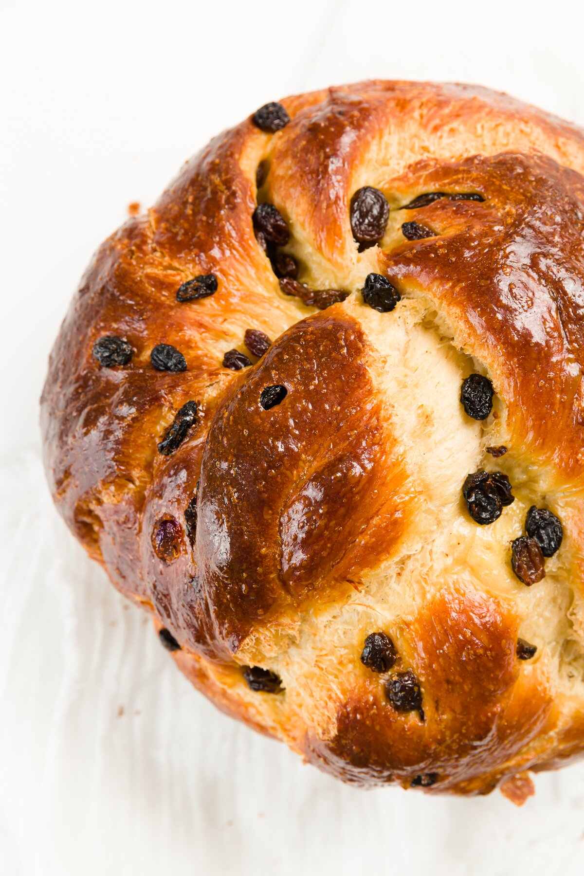 Close up shot of a round challah with rainsins