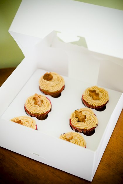 Cupcake Boxes from Bake-A-Box – Review, Giveaway, and Coupon Code!