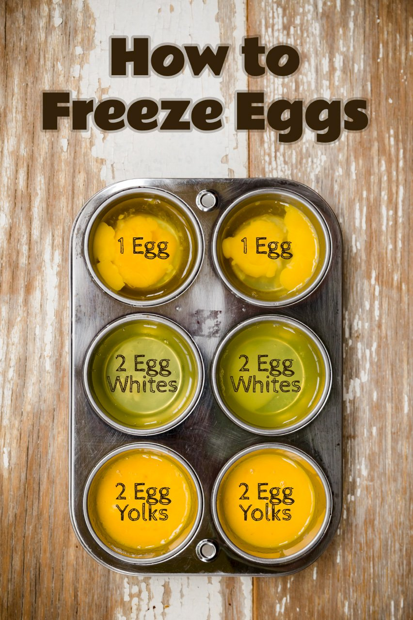 How to Freeze Eggs
