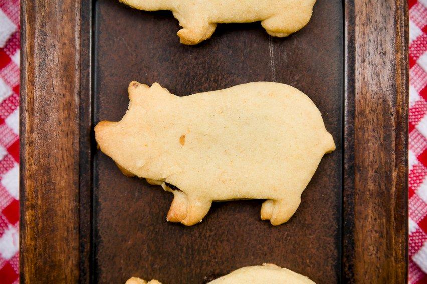 Pig Newtons