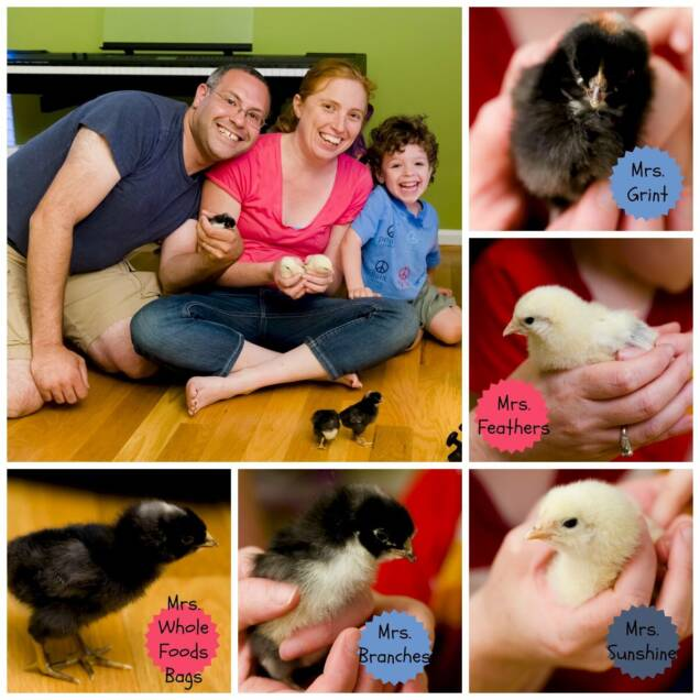 Family Photo with Chickens