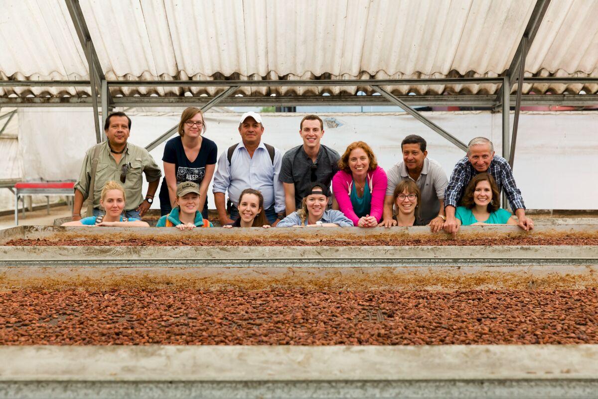 Fair Trade Cacao