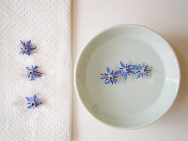 edible flowers-washing